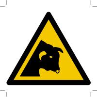 Warning; Bull