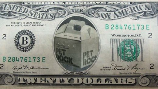Pet Rock Money