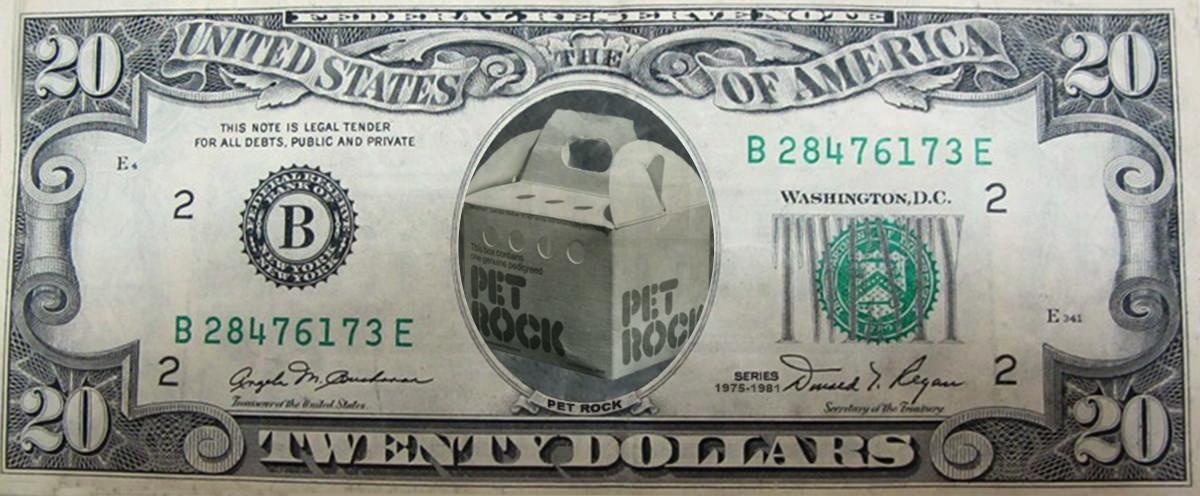 Pet Rock Money