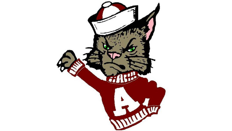4 sweet animals that give tough sports teams their names trivia happy the ashland kittens in high school sports spiritdancerdesigns Images